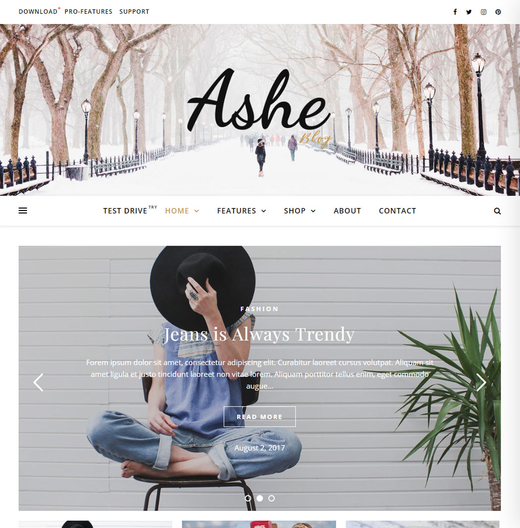 Ashe WordPress Theme