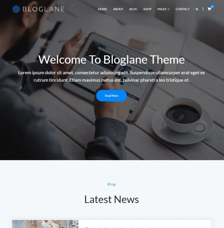 Bloglane WordPress Theme