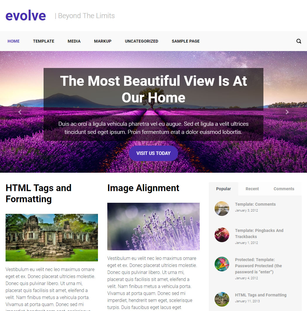 Evolve WordPress Theme