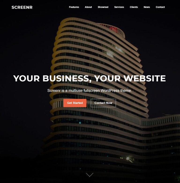 Screenr WordPress Theme