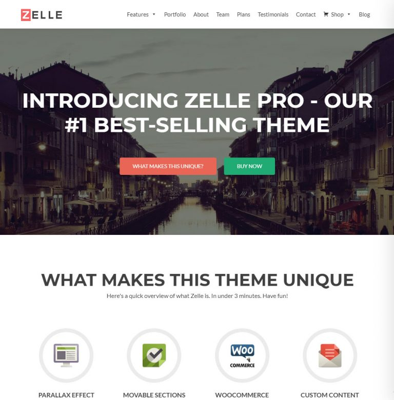Zerif Lite WordPress Theme