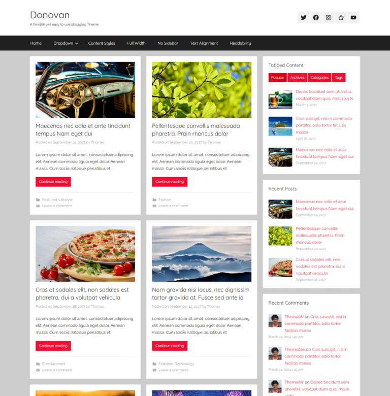 Donovan-A-flexible-yet-easy-to-use-Blogging-Theme