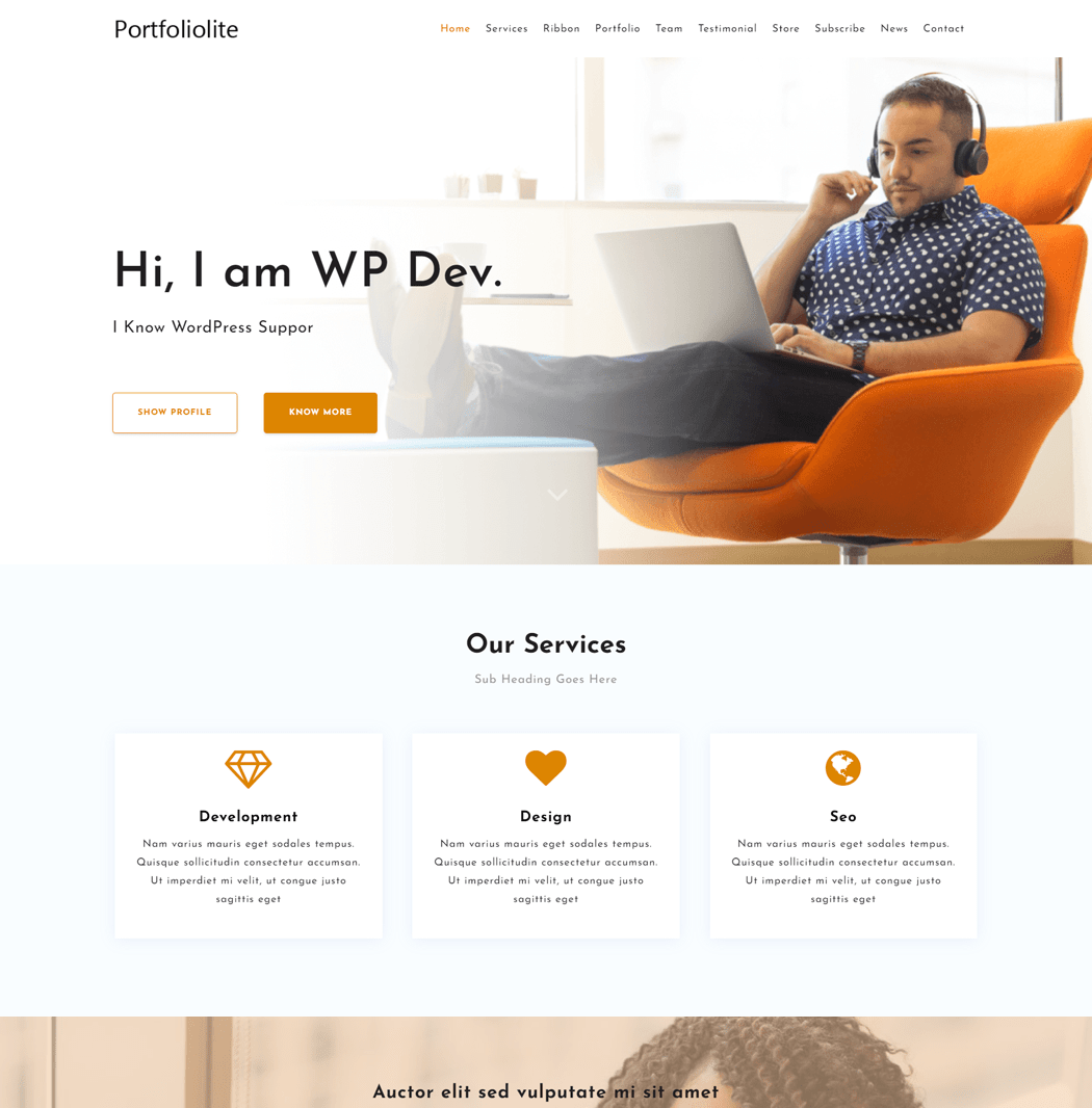 Portfoliolite theme is not just a portfolio theme but a multipurpose theme
